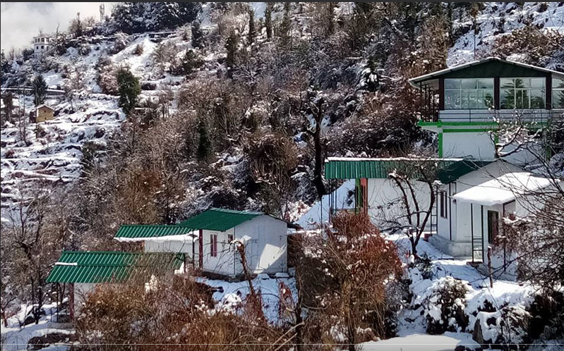 Auli Eco Nature Resort, Auli