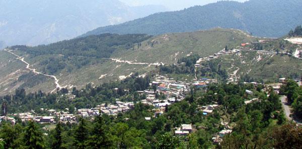 Image result for Bilju