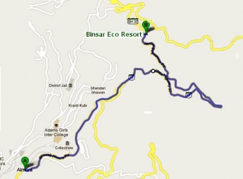 Binsar Eco Resort Photos