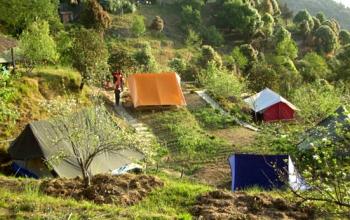 Wildrift Camp Purple Photos