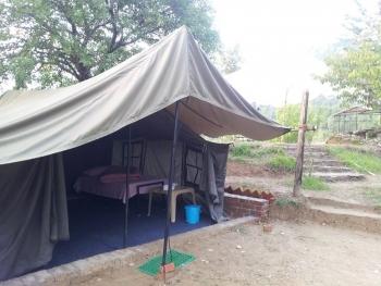 Camp Club Tarzan Photos