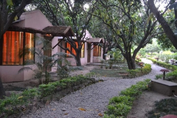 Corbett Wilds Resort Photos