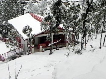 Cottage Nirvana Photos