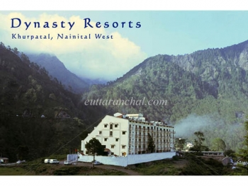 Dynasty Resort Photos