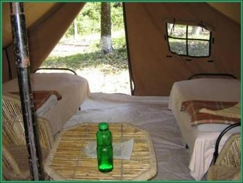 Getaway Jungle Camp Photos