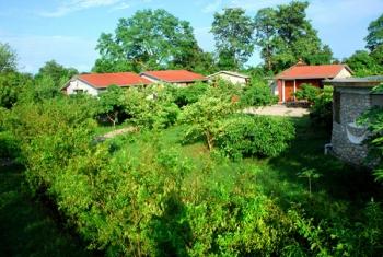 Jaagar Village Resort Photos