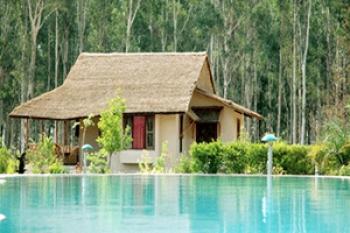 Jims Jungle Retreat Resort Photos