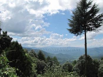 Mountain Resort Khali Estate Photos