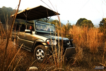 Patlidun Safari Lodge Photos