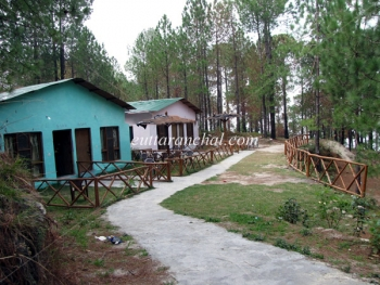 Retreat Anand Jungle Resort Photos