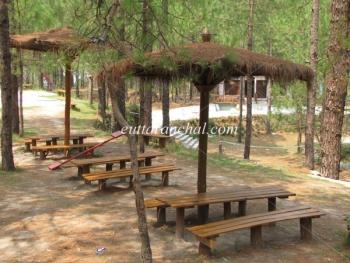 Retreat Anand Jungle Resort Photos