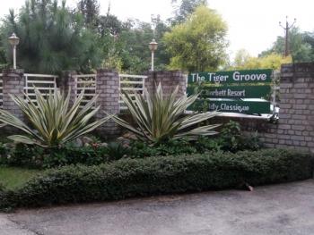 The Tiger Groove, Corbett Resort Photos