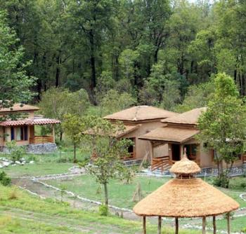 Wild Tusker Lodge Photos