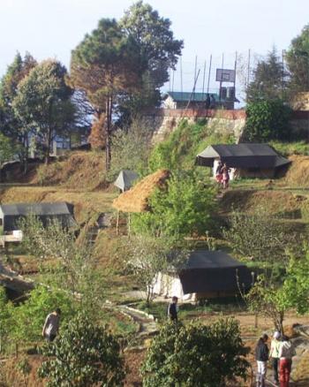 Wildex Camp Mukteshwar Photos