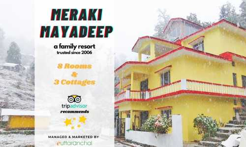 Hotel Package in Chopta - Stay with Meals
