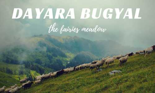 Dayara Bugyal with Bakaria Top Trek - 3 Nights Package