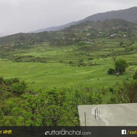 Green fields and villages as seen from Bageshwar-Almora Road.