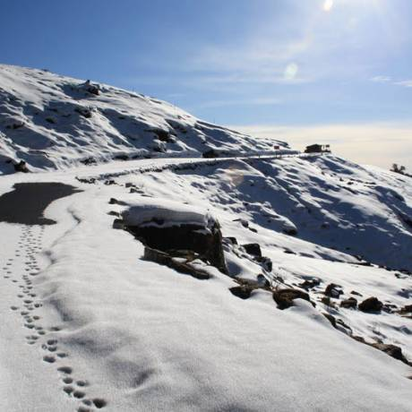 This picture was clicked in Chopta during winters. Also known as mini Switzerland of India it matches the value to its name.