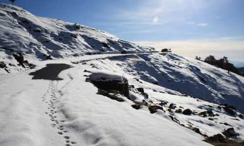 Chopta 2 Nights Camping and Trekking Tour