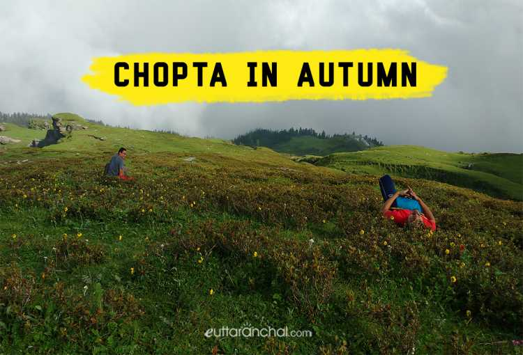 Chopta in Autumn