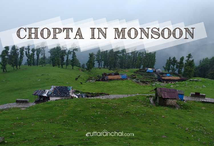 Chopta in Monsoons