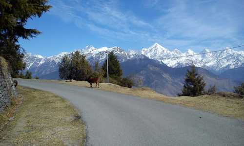 Kumaon Extensive 9 Days Tour Package