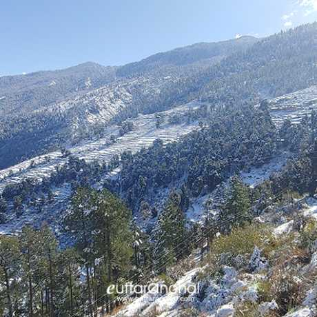 Nearby area of Sankri village after snowfall