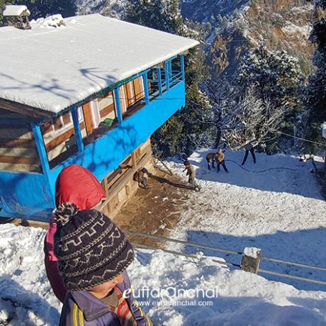 Children enjoying the snowfall in Sankri village.