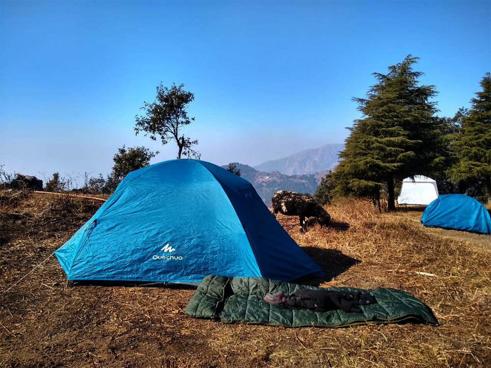 Camping in George Everest near Mussoorie Photos
