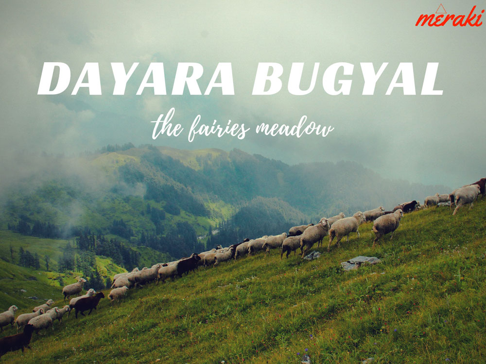 Dayara Bugyal with Bakaria Top Trek - 3 Nights Package Photos