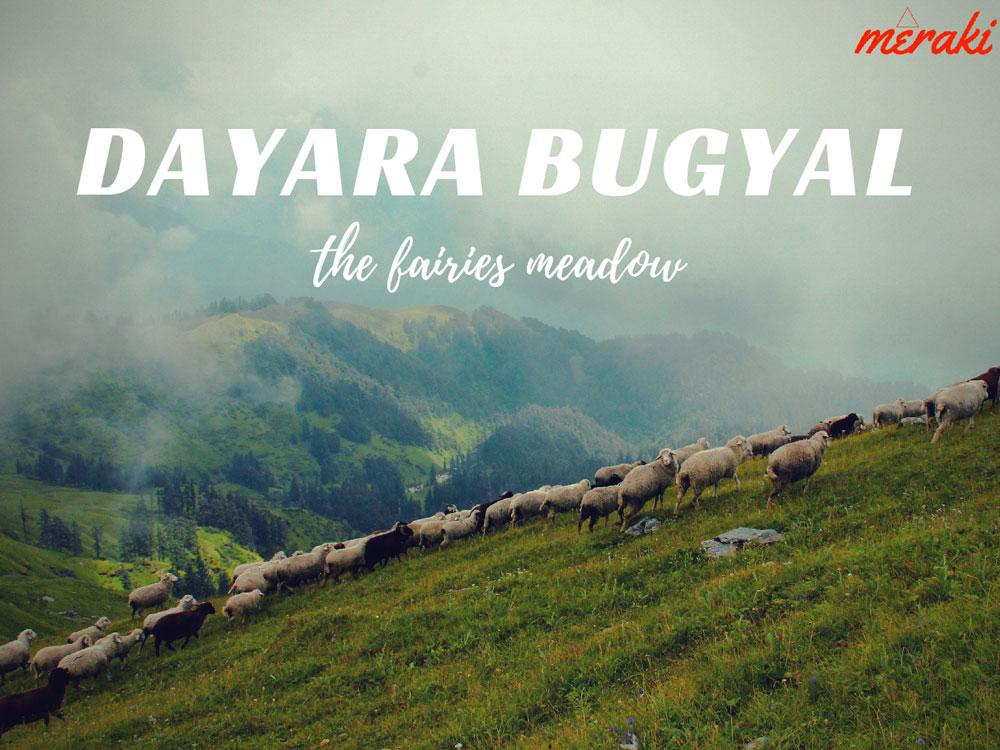 Dayara Bugyal with Bakaria Top Trek - 3 Nights Package Photos