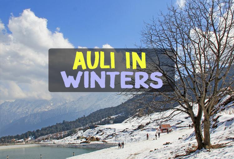 Auli in Winters