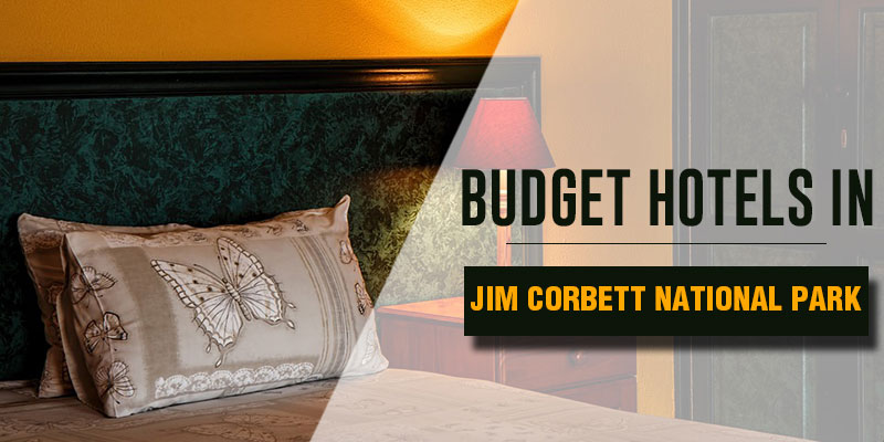 Budget Hotels in Jim Corbett National Park