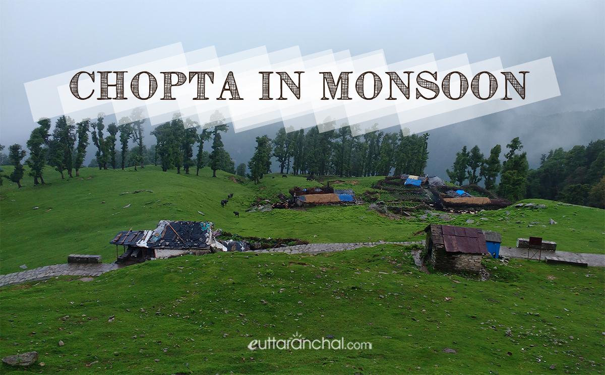 Chopta in Monsoons