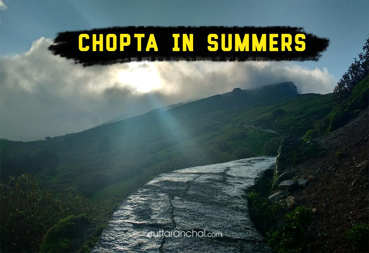 Chopta in Summer