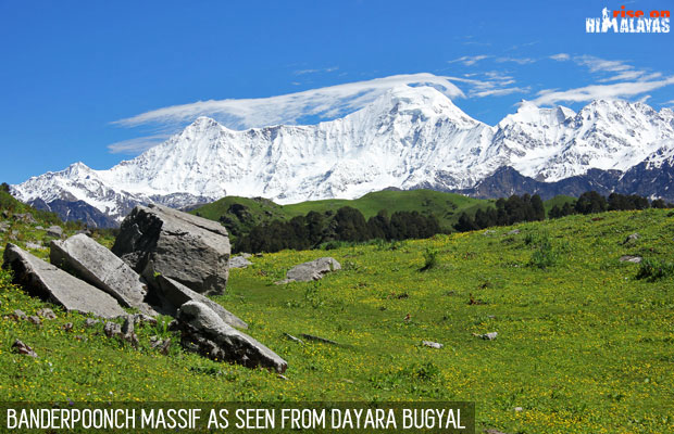 5 Nights Dayara Bugyal with DodiTal Trek Photos