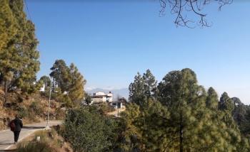 Home Stay in Chirbatia