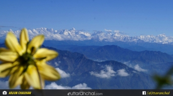 Home Stay in Kanatal