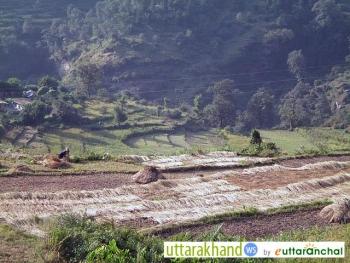 Home Stay in Sagar Village