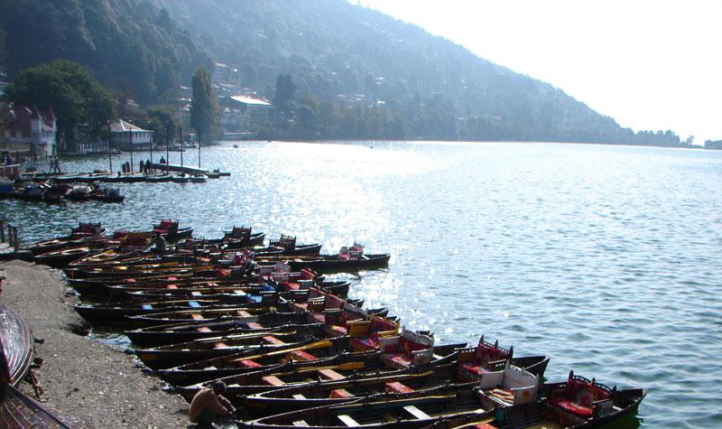 Nainital Kausani Chaukori – Munsiyari Package 8 nights and 9 Days Photos
