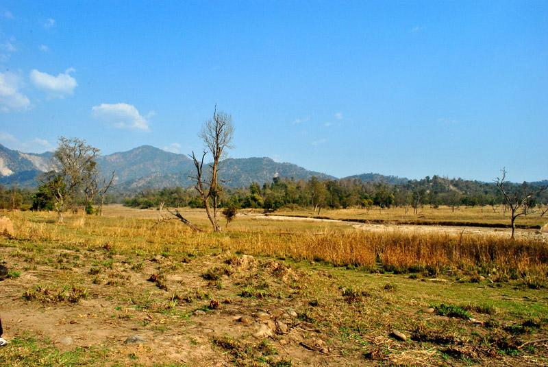 Rishikesh Biking Tour with Rajaji National Park Jungle Safari Photos
