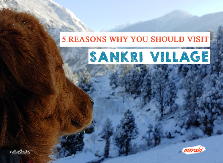Top 5 Reasons Why you should visit Sankri