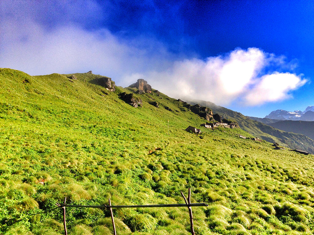 Rudranath 4 Nights Trekking Package Photos