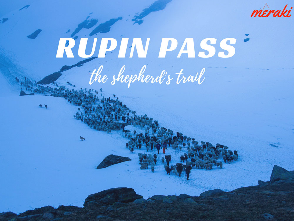 Rupin Pass ex-Sankri Trekking Photos