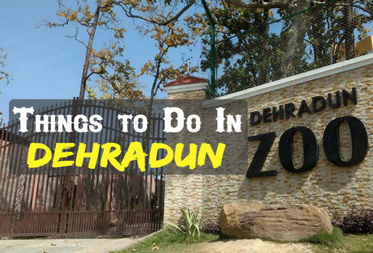 Activities In Dehradun