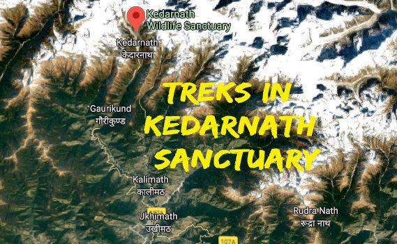 Trekking Spots in Kedarnath Wildlife Sanctuary