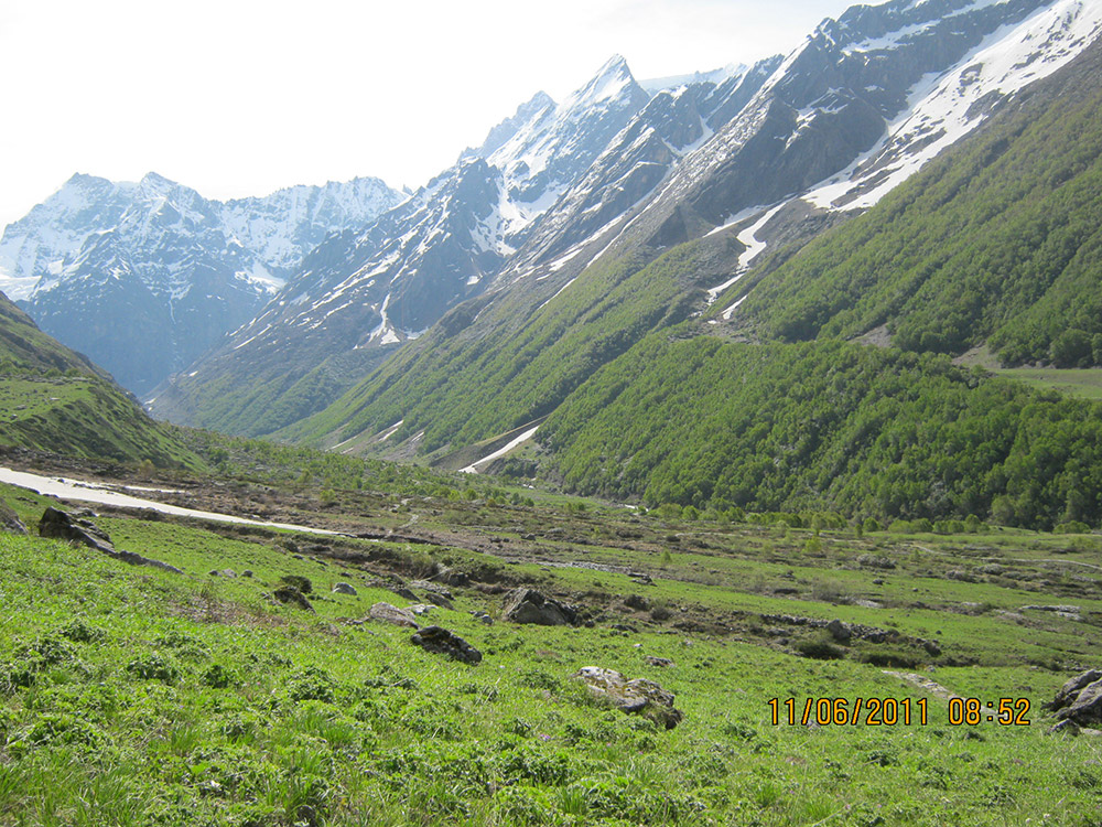 Valley of Flowers and Hemkund Sahib Luxury Tour Package (Ex-Haridwar) Photos