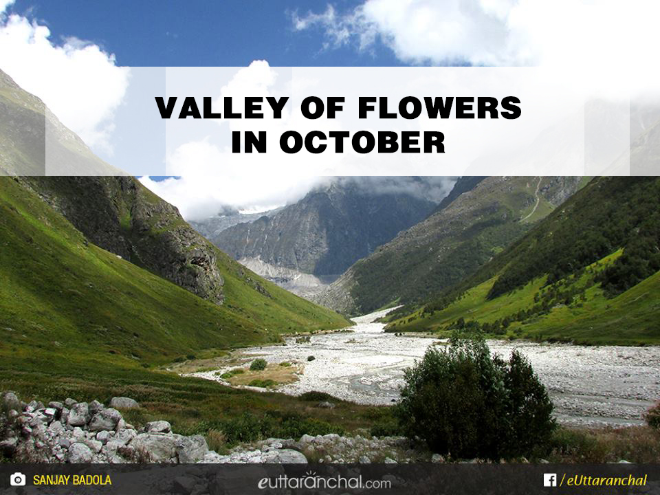 Valley of flowers In October