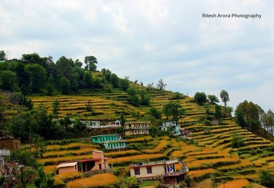 Farm Houses In Chamba On The Way To Tehri Dam