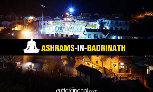 Ashrams in Badrinath
